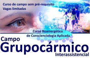 Curso - Campo Grupocármico Interassistencial @ Hotel Tulip Inn | Rio Grande do Sul | Brasil